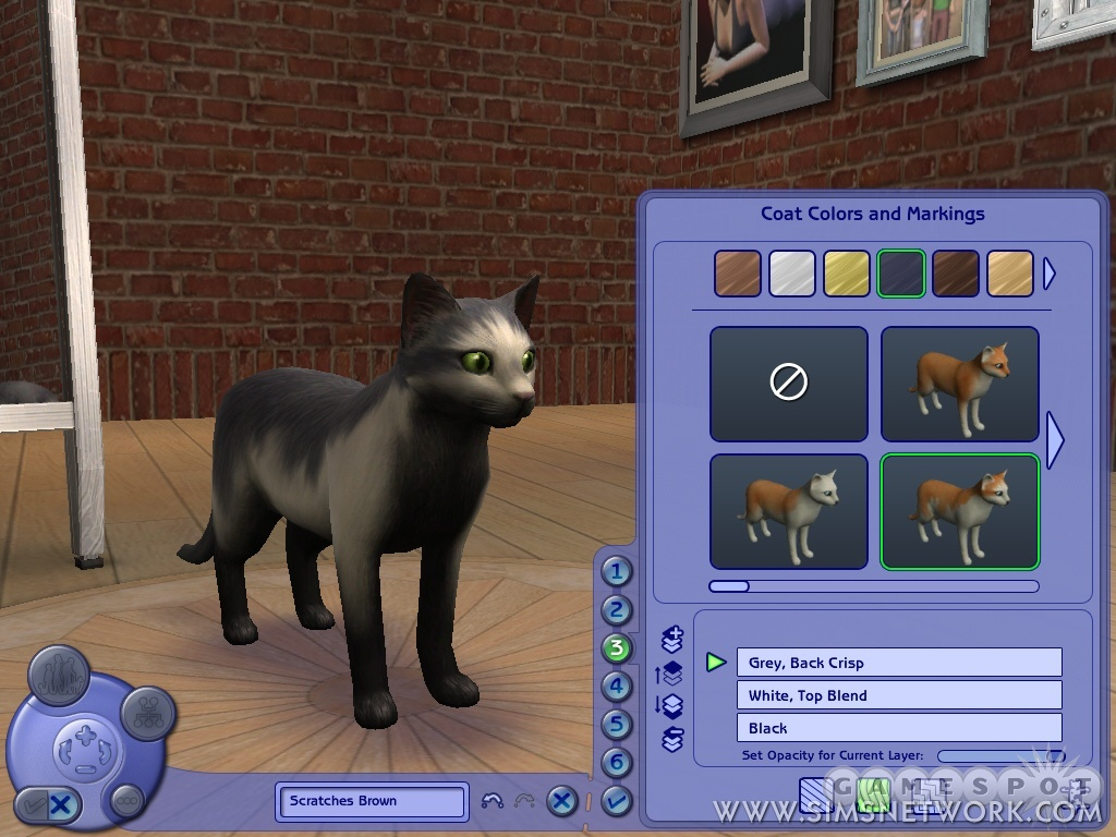 Adopt A Stray Cat Sims