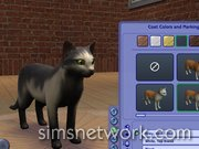 The Sims 2 Pets
