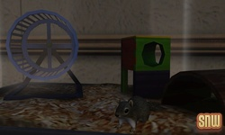 The Sims 3 Pets: Squirrel